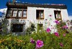 A typical Ladakhi house and garden